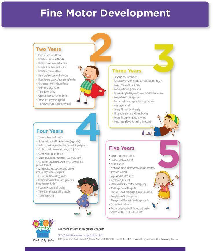Fine motor development infographic from pediatric ot for What is motor development