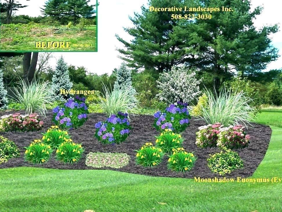 Image Result For Simple Landscape Focal Points Backyard Landscaping Designs Landscaping On A Hill Front Yard Landscaping Design