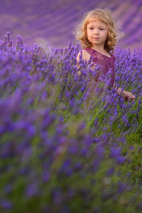 34 Field of flowers/girl ideas   children photography, beautiful children, girl