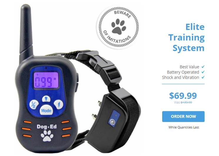 Dog training collar reviews