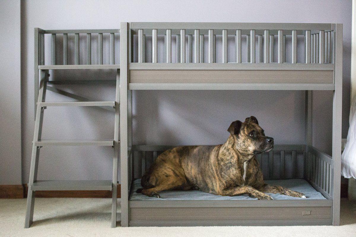 Rosalyn Dog Sofa Unique Dog Beds Dog Bunk Beds Dog Bed