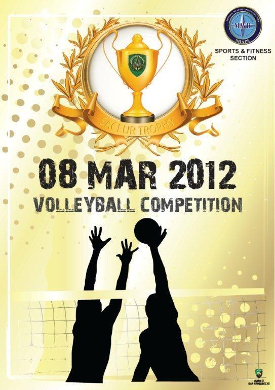 Volleyball.jpg (543×768)