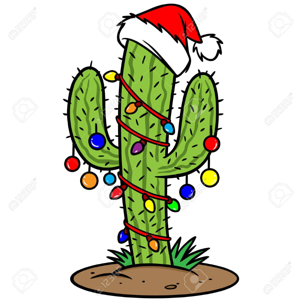Christmas Cactus Royalty Free Cliparts Vectors And Stock Illustration Image 57291599 Christmas Cactus Cactus Drawing Cactus Clipart