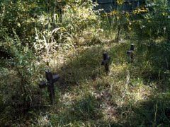 Pauper Cemetery located in old Campbell County Ga. (now Fulton) from the Monk Community Red Oak District Pauper's home