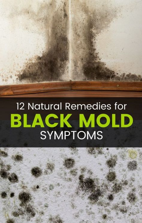 Black Mold Exposure And Poisoning Can Cause A Wide Range Of Health Problems Some Symptoms Actually Be Really Ser