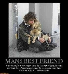 Precious Dog Pics With Quotes - Yahoo Image Search Results