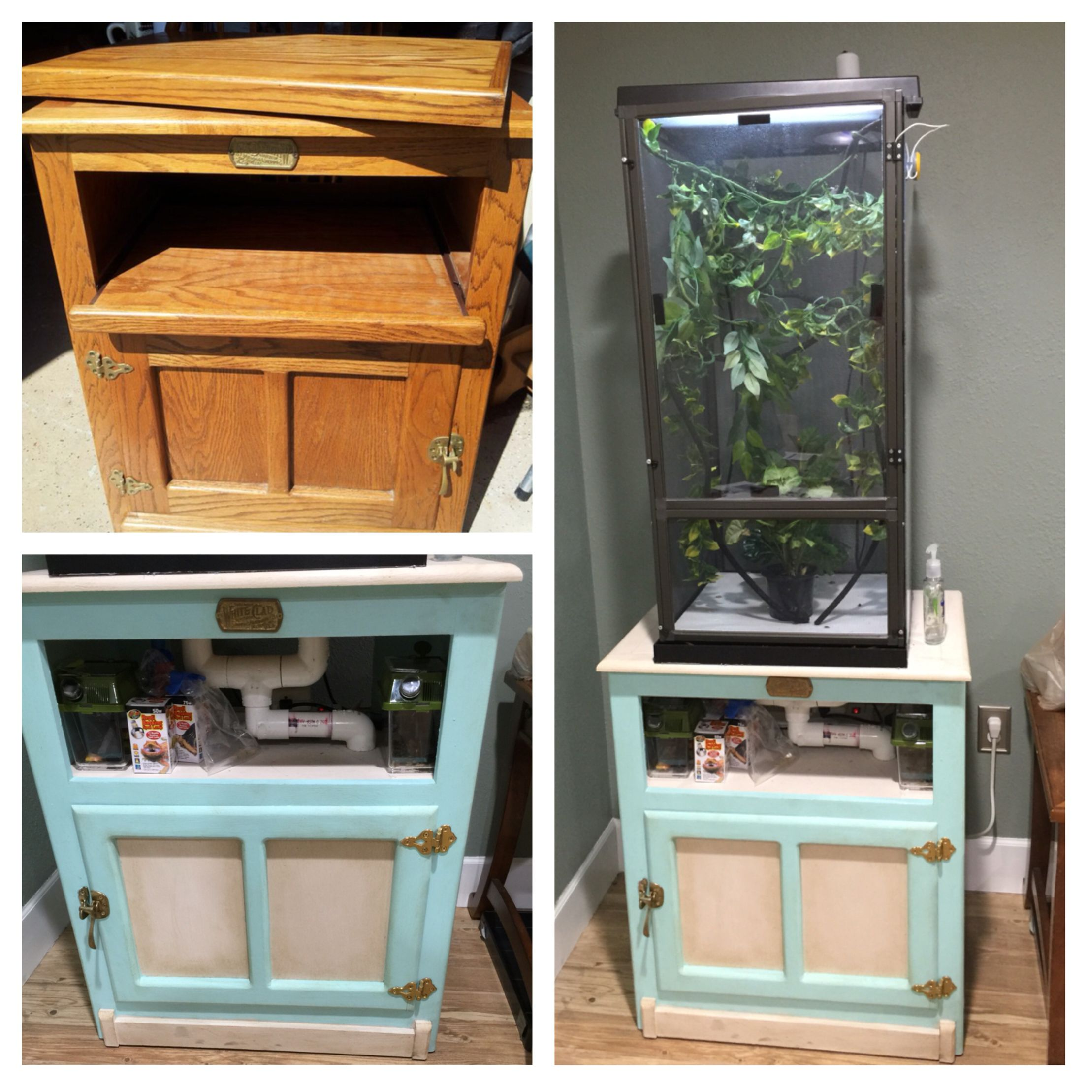 Before And After Of A Repurposed Tv Stand To A Chameleon Cage With