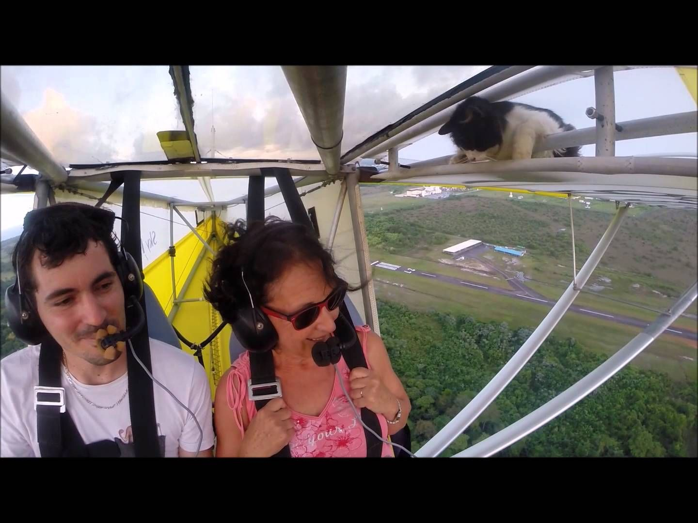 """Remove cat before flight - YouTube user Romain Jantot posted the video on June 21, 2015 and says it happened at Club ULM 16-34 in French Guyana, an overseas region of France on the northeast coast of South America. """"I still don't know if it got in after the pre flight check or if I missed it,"""" commented Jantot. Thankfully, the cat was able to hang on long enough for the pilot to land. """"The cat is doing well, she is still our mascot."""""""