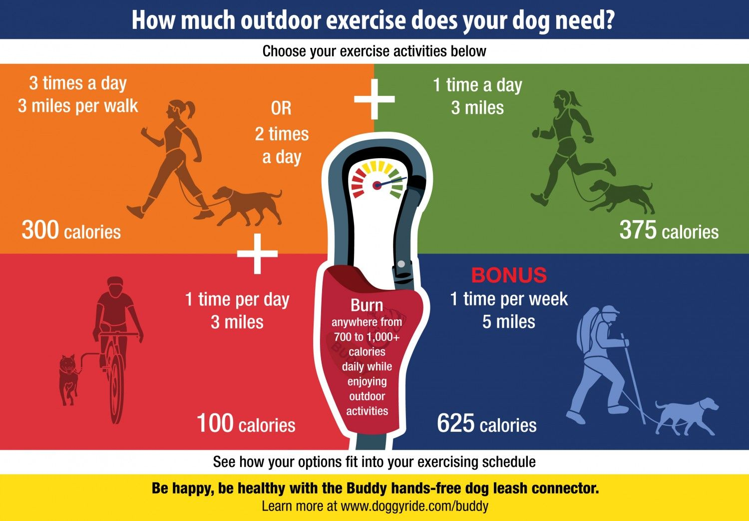 How Much Outdoor Exercise Does Your Dog Need? Visual.ly