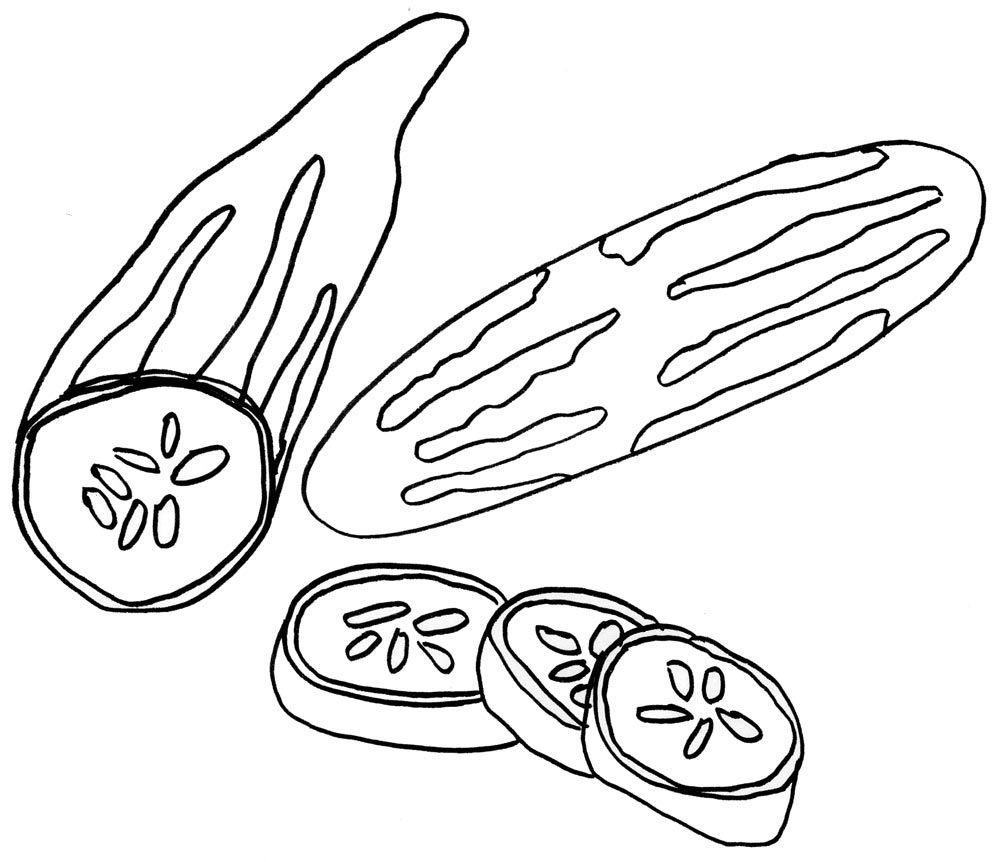 Vegetable Cucumber Coloring Pages Printable For Kids Fruit
