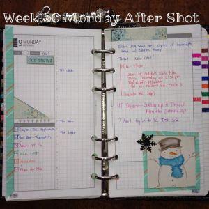 Week 50 Monday After Shot #filofax #daytimer #franklin covey #diyfish #lifemapping #planner #organization
