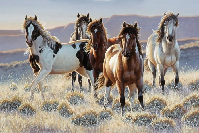 horse wall murals The Horse Wall Murals for Your Kids