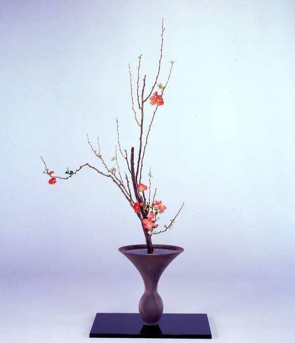 "Shoka Shofutai ""Isshuike"" using Japanese quince"