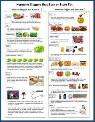 dr berg keto diet for type 1 diabetes
