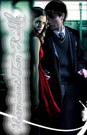 Hermione And Tom Riddle Harry Potter Harry Sonserina