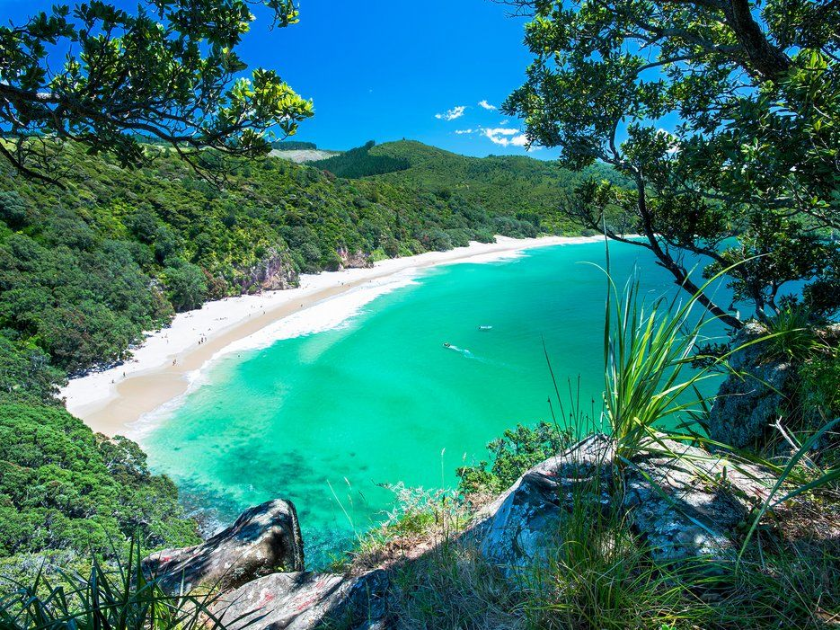 The Best Beaches in New Zealand - Condé Nast Traveler