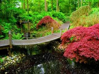 Nippon Garden !