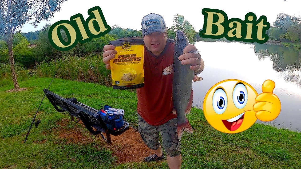 Pond fishing with OLD Team Catfish Fiber Nuggets!!! in