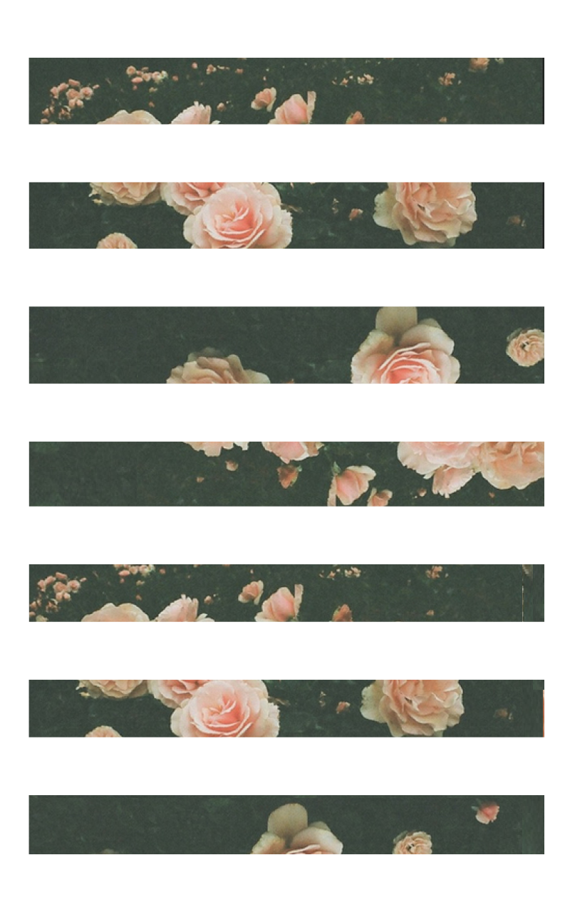 Blush Pink Peach Floral Stripes Images For Iphone 5 Floral