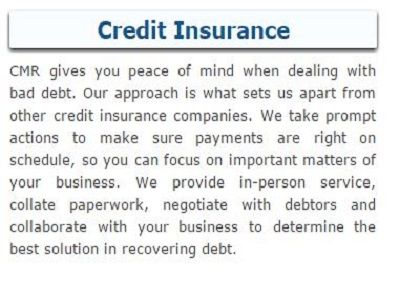 Cmr Insurance Services A Renowned Credit Insurance Specialist In