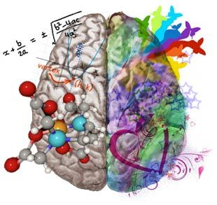The multi sensory nature of music training and neuroplasticity included brain changes related to perception, sensation, performance and abstract reasoning.