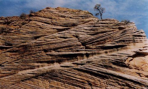 Cross-bedding in the Navajo Sandstone | Cool Geology! | Geology
