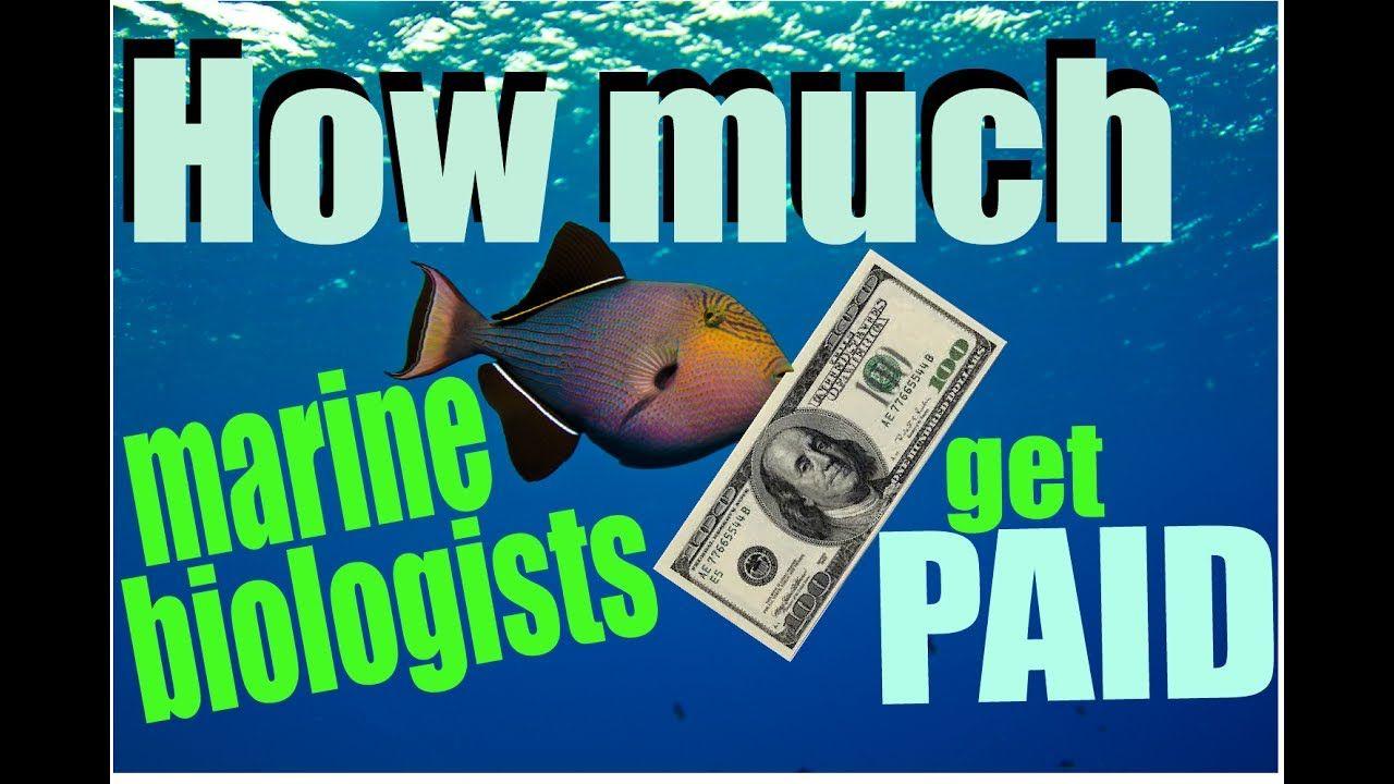 How much marine biologists get PAID Marine biologist