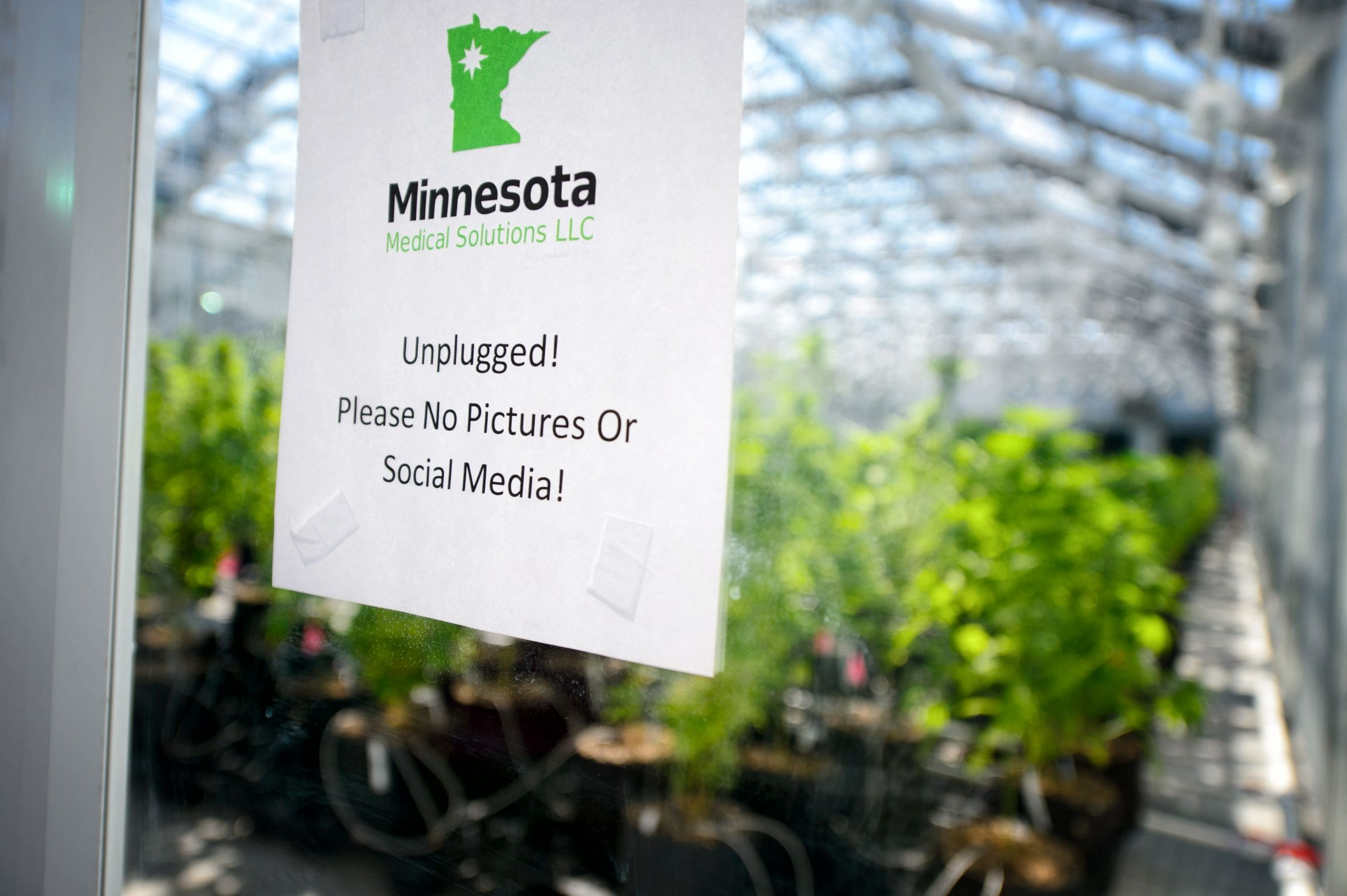 More medical marijuana doctors than patients? Perhaps a sample for ...