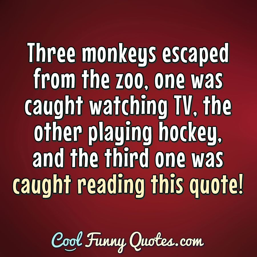 Funny Quote In 2020 Funny Quotes Funny Animal Quotes Witty Quotes