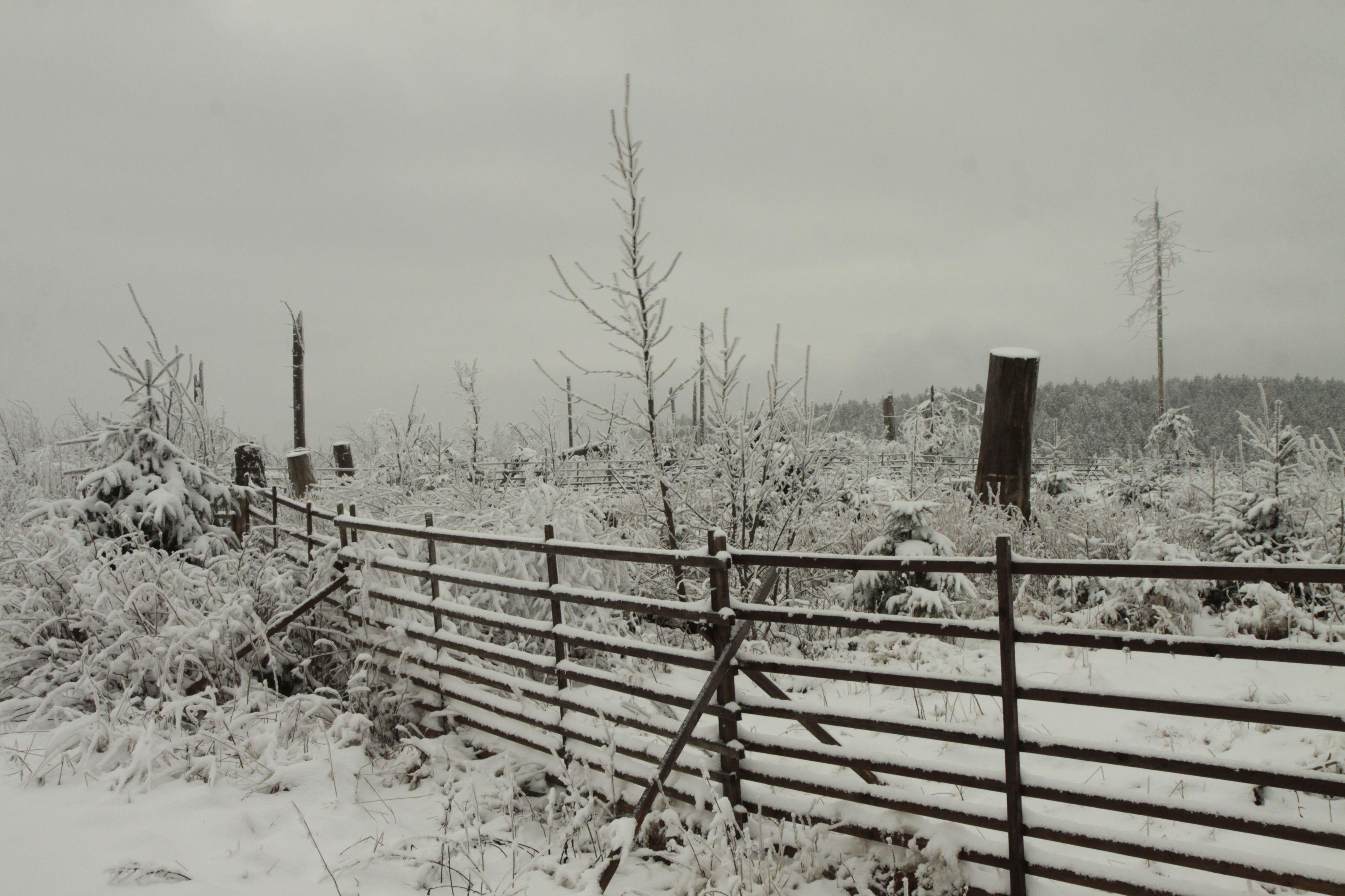 winter in willingen