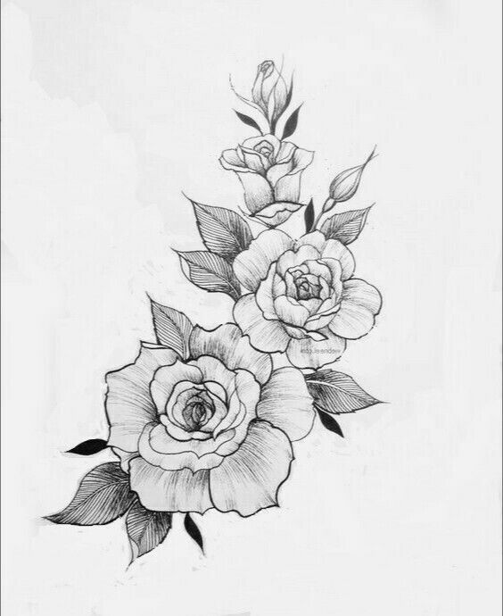 Pin By Dan Jordan On Roses Tattoo In 2020 Tattoos Rose Tattoos Flower Tattoo Designs