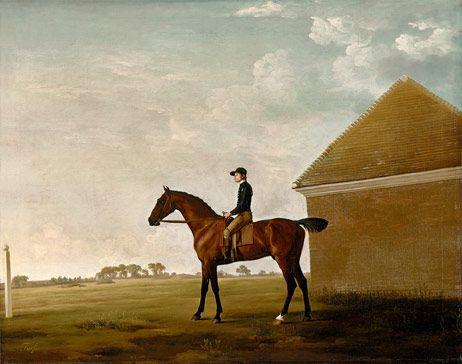 """Die Neue Pinakothek in München zeigt eine umfassende Werkschau des britischen Malers George Stubbs. """"Turf in Newmarket, mit Jockey im Sattel"""", um 1766 (© Yale Center for British Art, Paul Mellon Collection)"""
