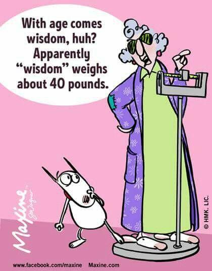 Gaining Wisdom With Age Funny Cartoons Jokes Funny Quotes Cartoon Jokes