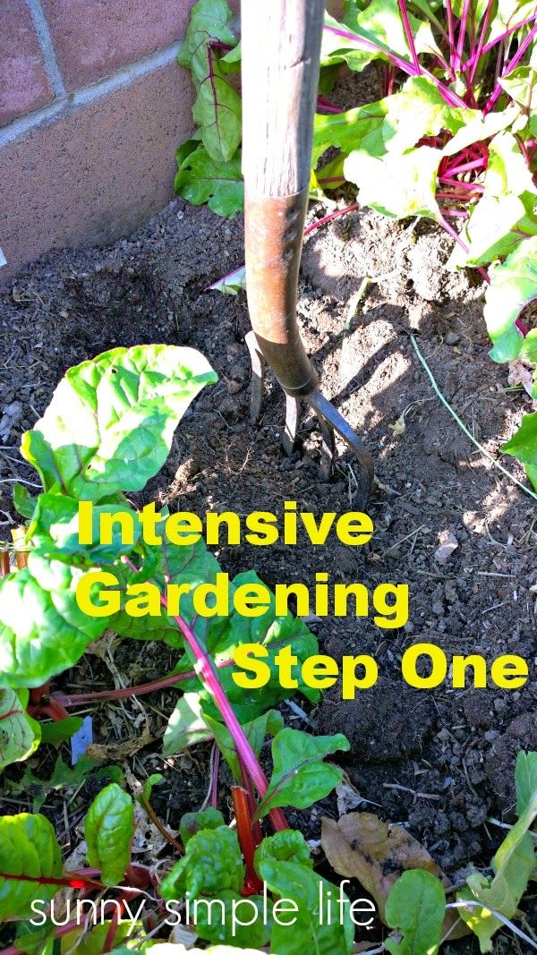 Intensive Gardening Step One Garden Party Jardins Potager