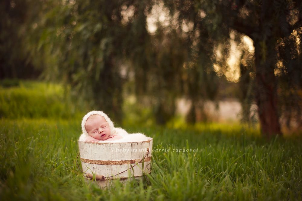 Family outdoor photo ideas with newborn baby yahoo