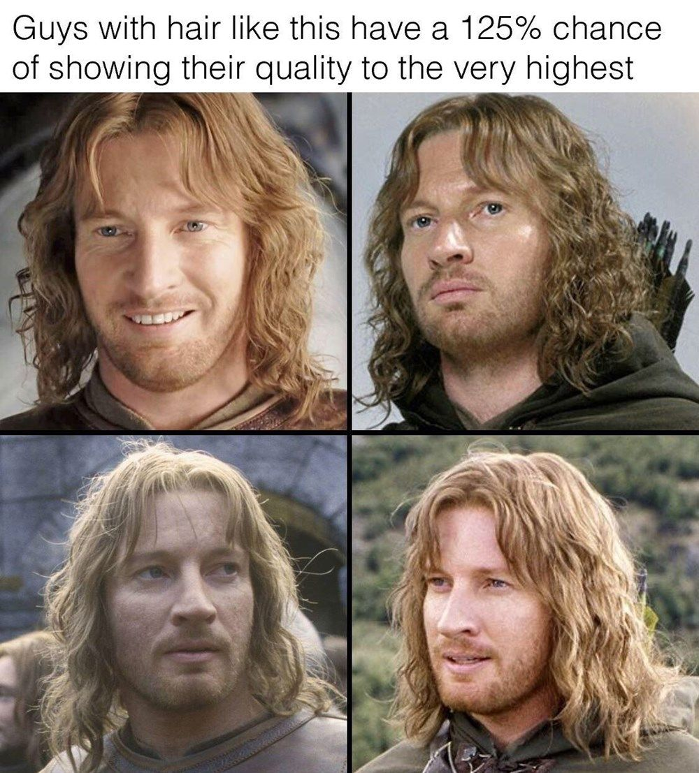 21 Mostly Fresh Lord Of The Rings Memes Lord Of The Rings The Hobbit Lord