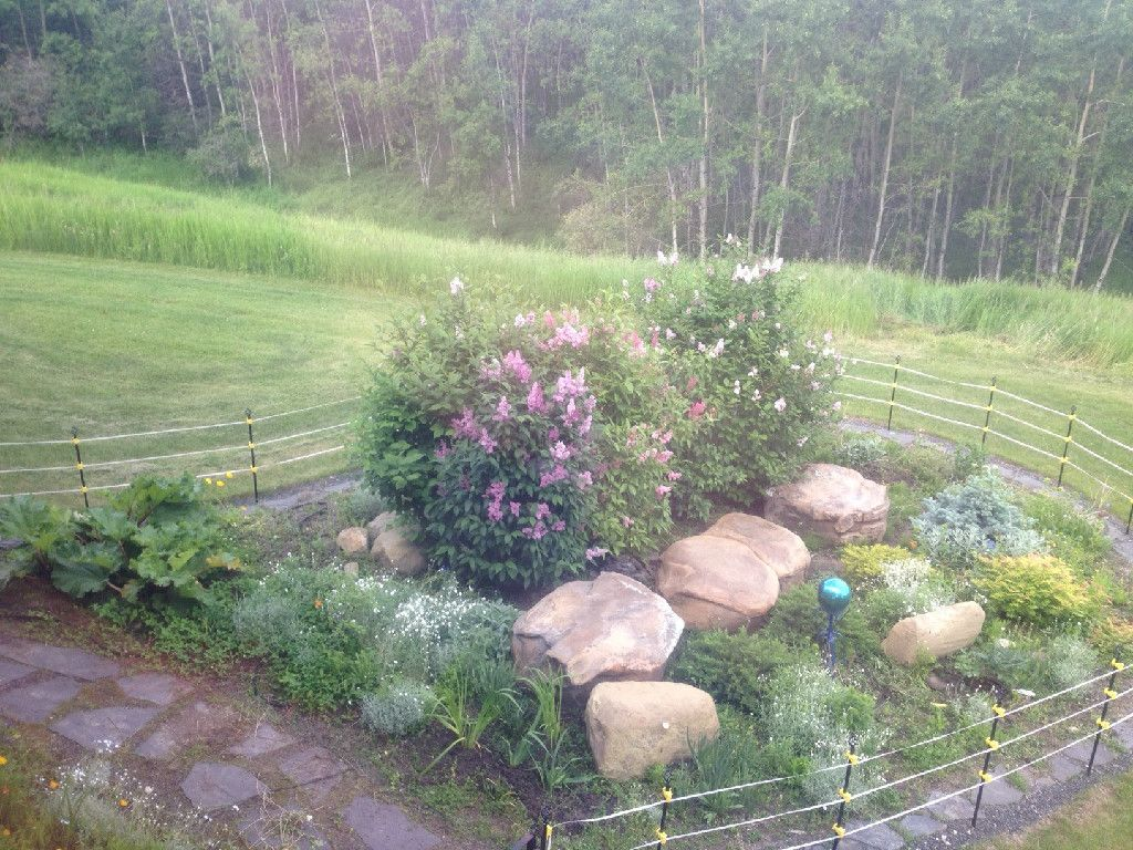 Best way to find septic tank cover