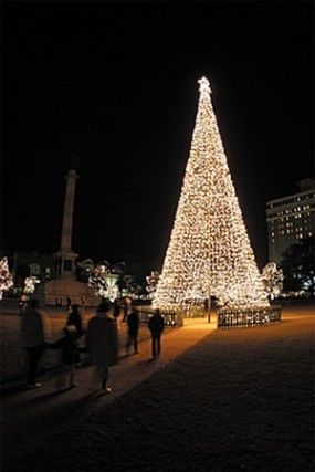 marion square tree lighting charleston sc christmas events holiday events in charleston sc