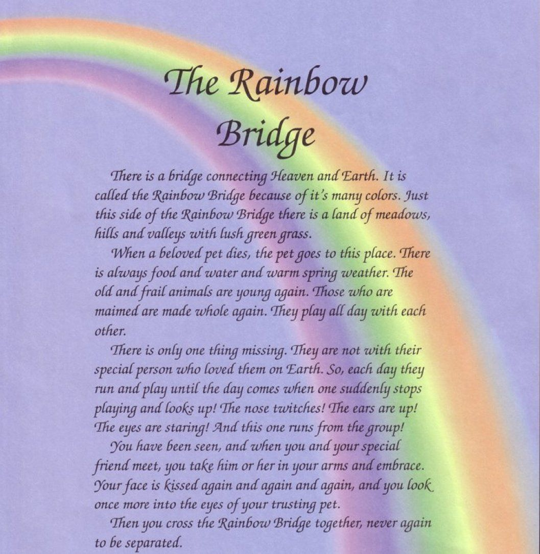 Rainbow Bridge Pet Heaven Poem About The Rainbow Bridge
