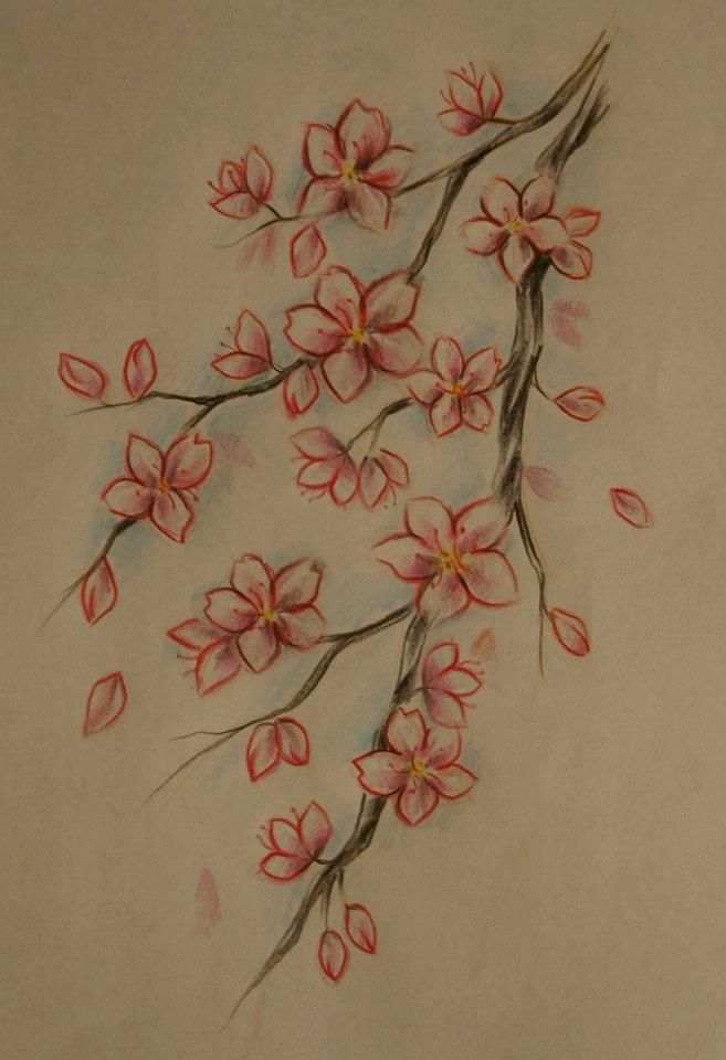 Cherry Blossom Tattoo Love This As It Has Soft Edges And Is Very
