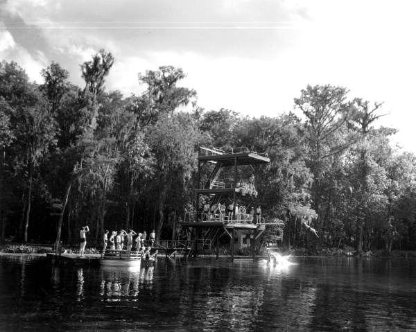 Wakulla Springs Diving Platform Florida Springs Old Florida State Parks