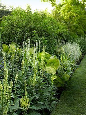 7 Landscaping Tips from a Garden Design Pro #landscapingtips