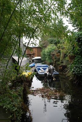 The Intercontinental Gardener: The Floating Gardens Of Seattle Great Blog    About An Uprooted But