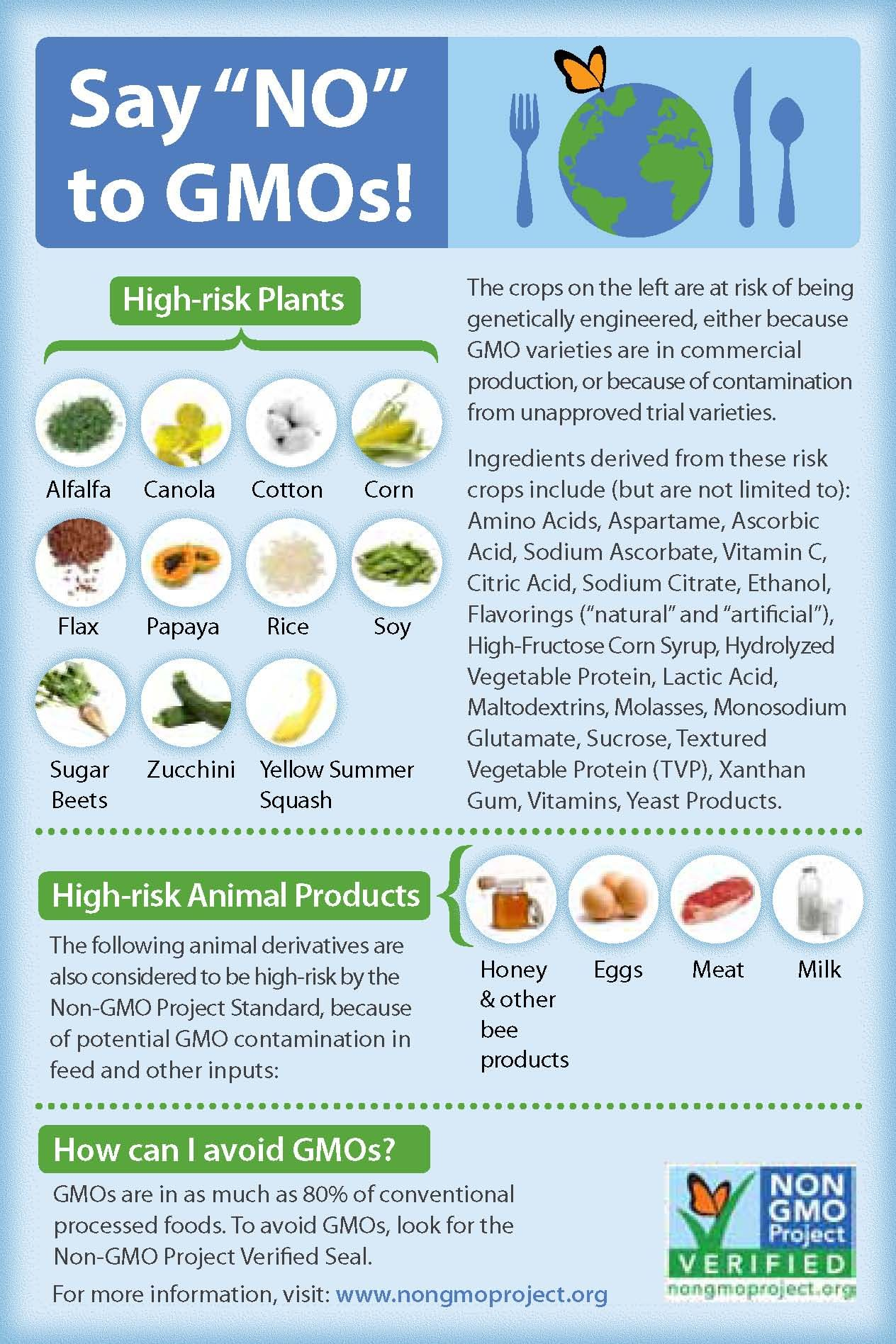 Say No To Gmos Free Printable Guide To The Foods With The