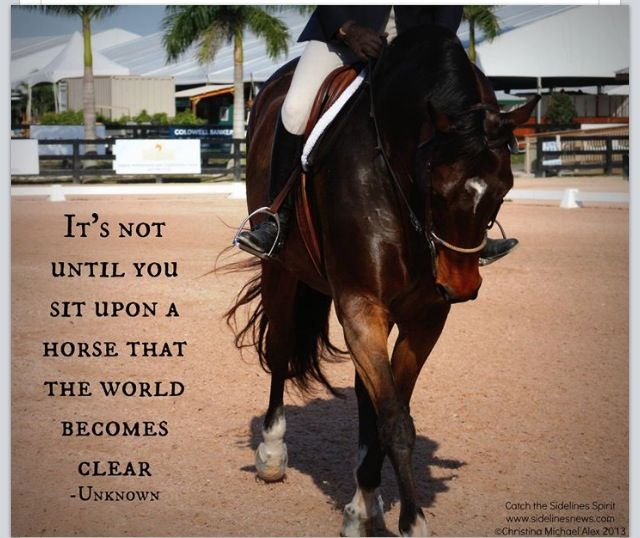 True I have always loved horses. I've ridden since I was one yr. old. Of course I'm not suppose to on them anymore, but...given the chance, on a nice easy going, chubby one bareback... Let me fly again. Just one more time. :)