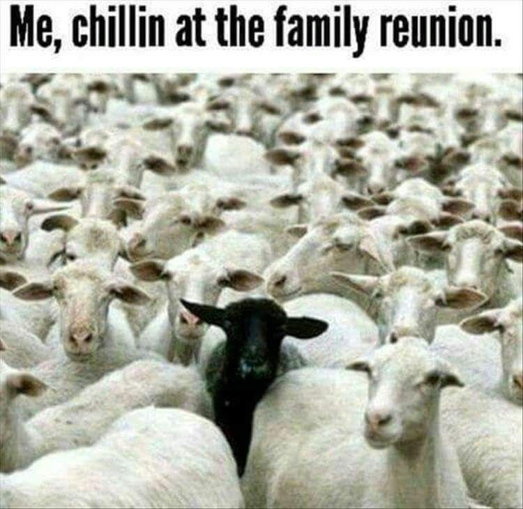 Black Sheep Of The Family Me Chillin At The Family Reunion
