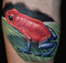 Frog, blue, red, Tattoo