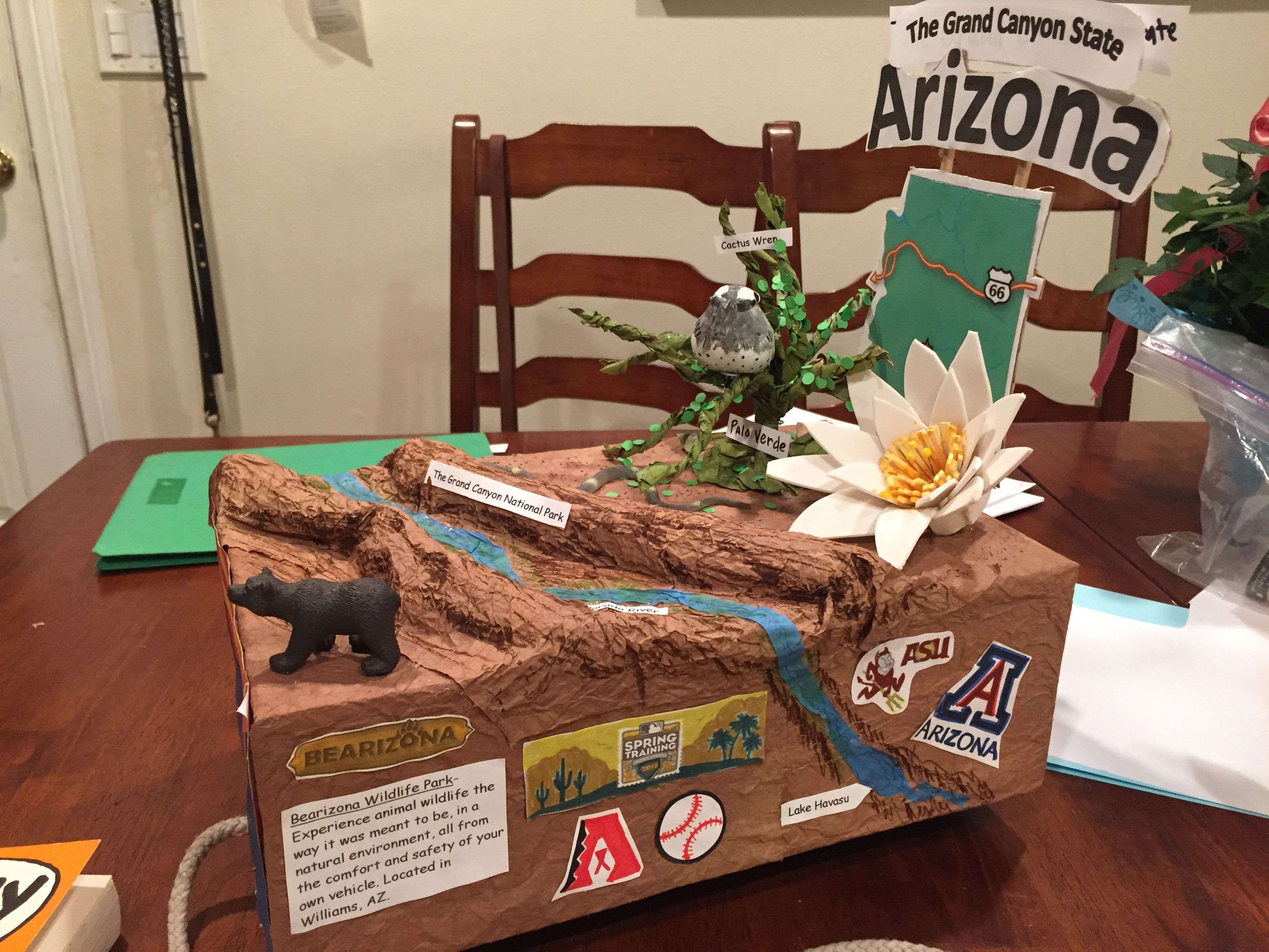 Arizona State Float 5th Grade Project