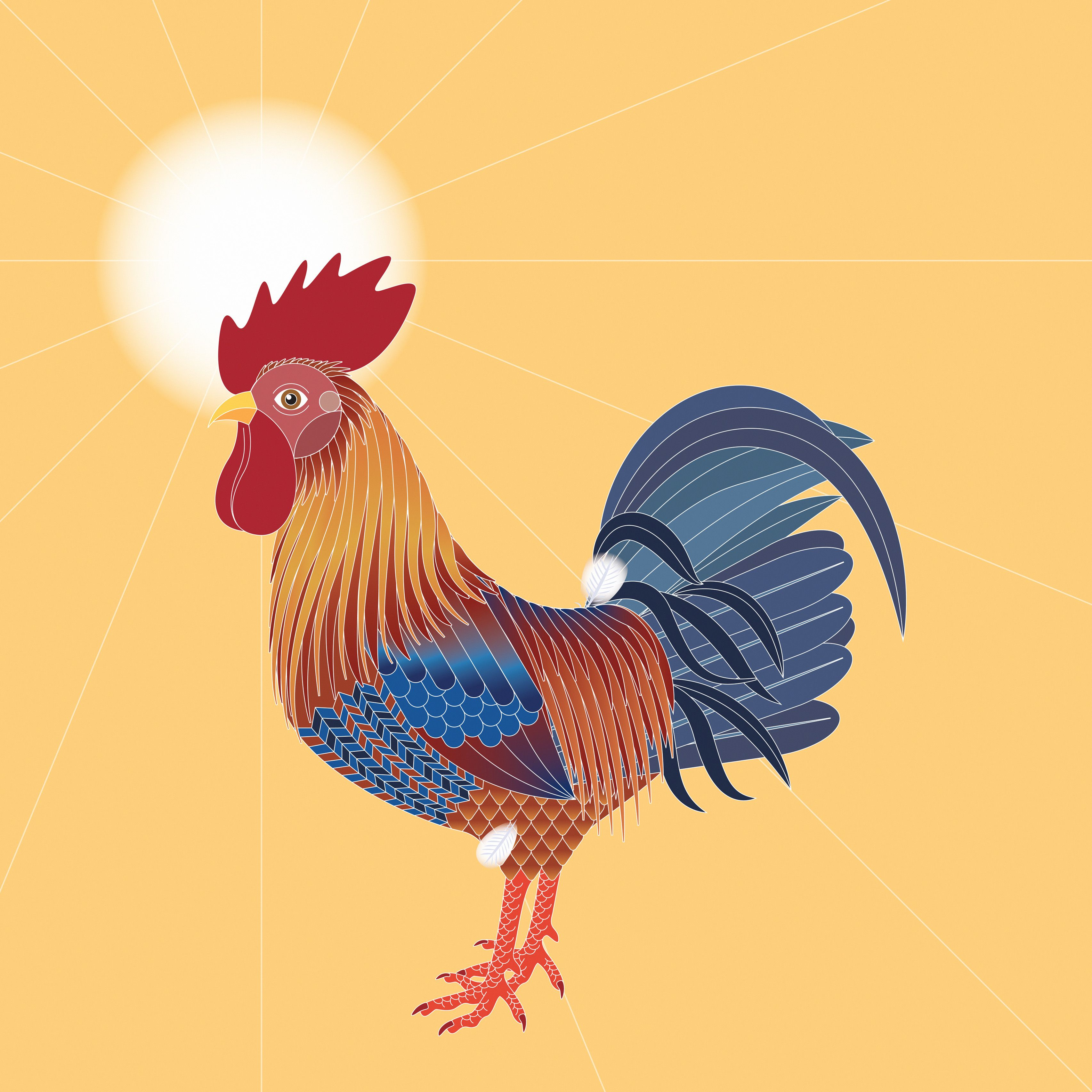 2017, Year of the Rooster #rooster #society6 #chicken #illustration #bird #chinese-zodiac #horoscope