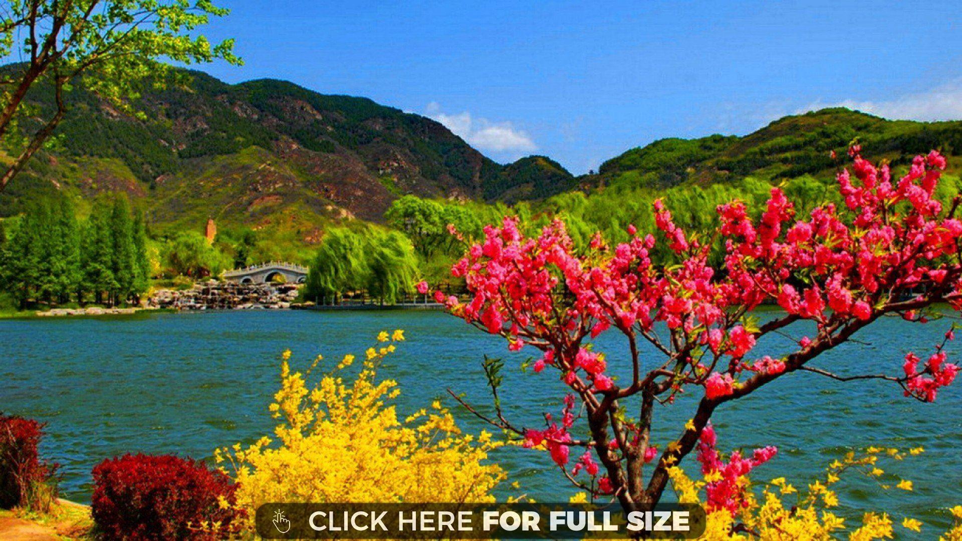 Exotic Honeymoon Locations